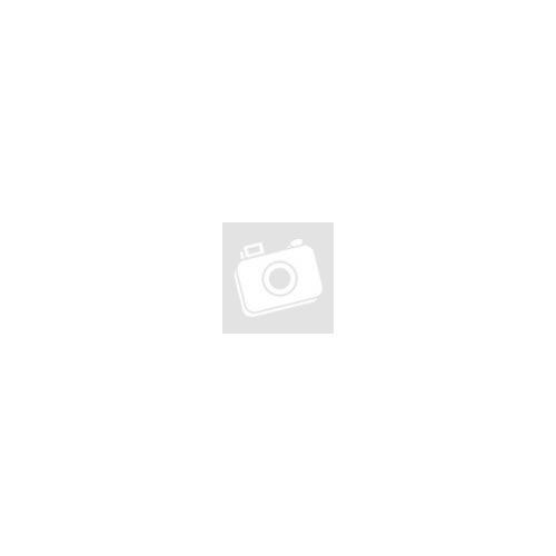 Beko RCSA330K31 PT alulfagyasztós inox hűtőszekrény 2 év garanciával A++